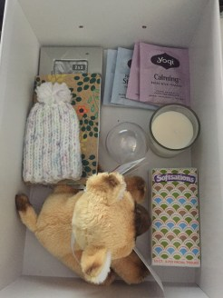 Gabriella's Hugs Box