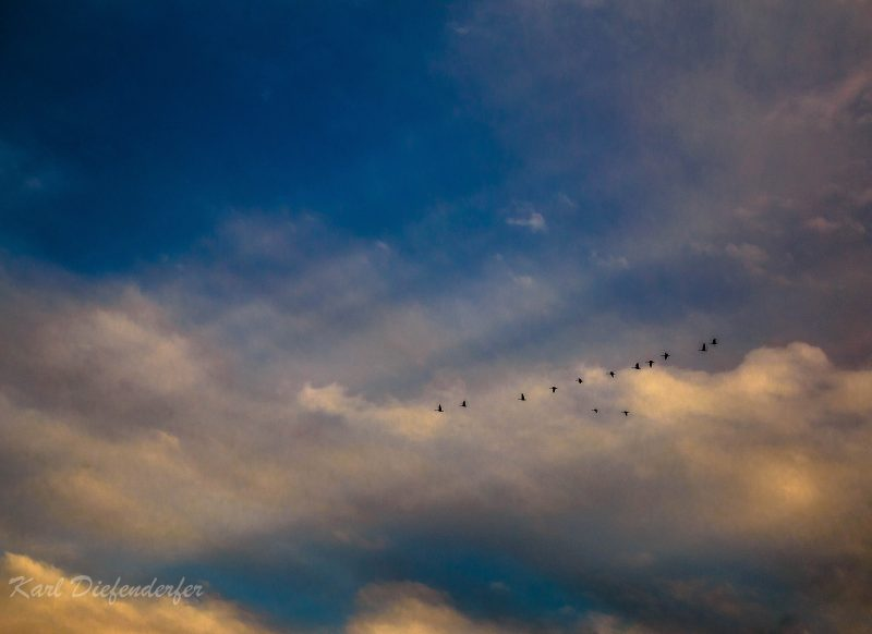 White rays streaming through clouds with a flock of wild geese in flight.