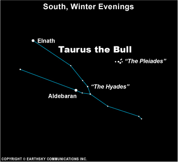Chart of constellation Taurus with Hyades star cluster and tiny Pleiades cluster above it.