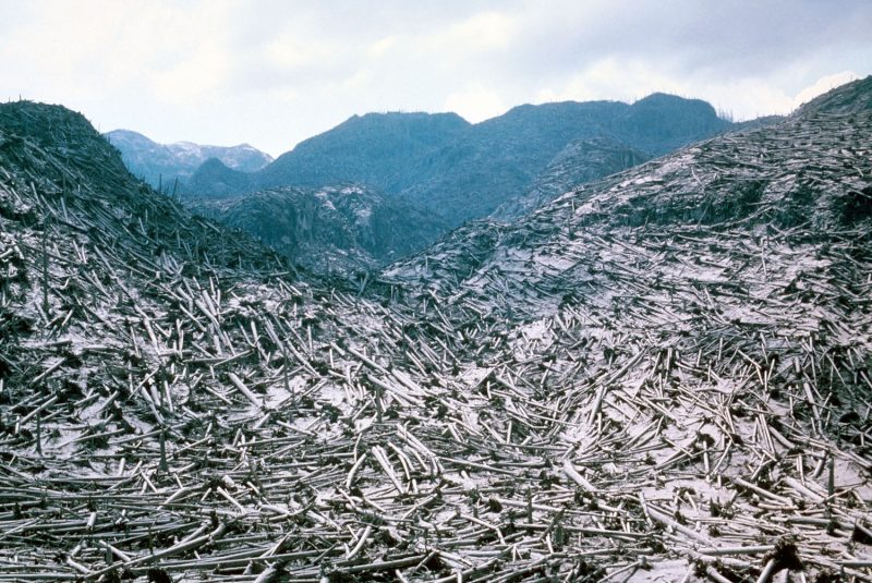 Mountainous area covered in fallen logs.