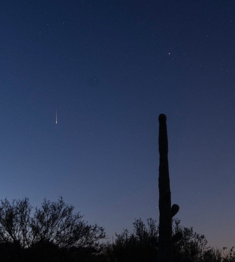 Thin vertical bright line in dark blue sky, with a tall Saguaro cactus in the foreground.