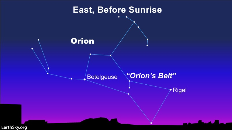 Orion the Hunter returns: A star chart showing Orion in the east before dawn in late July or early August.