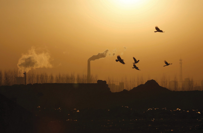 BIRDS FLY near factory emissions n Tangshan, China, in 2016. Waskow emphasizes the importance of using religion to fight climate change (credit: KIM KYUNG-HOON/FILE PHOTO/ REUTERS)