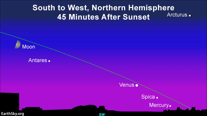 Chart with quarter moon, Antares, Venus, Spica, with Mercury close to horizon, all nearly along shallow ecliptic line.