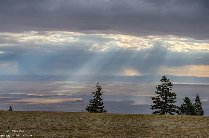 Sunbeams from clouds over landscape with few trees.