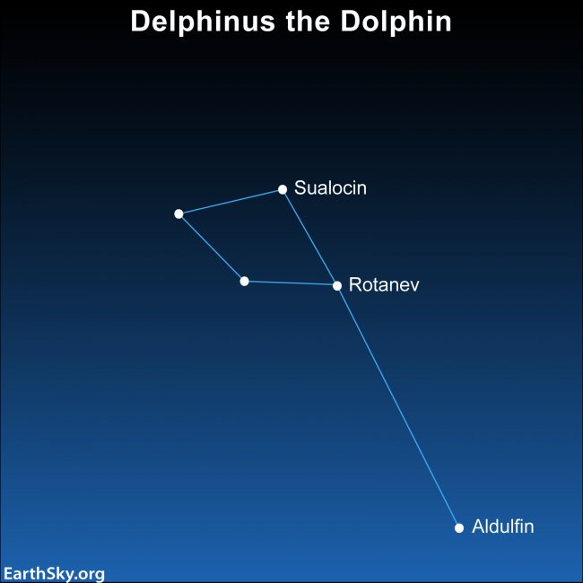 Star chart of constellation Delphinus with 5 stars, 3 labeled.