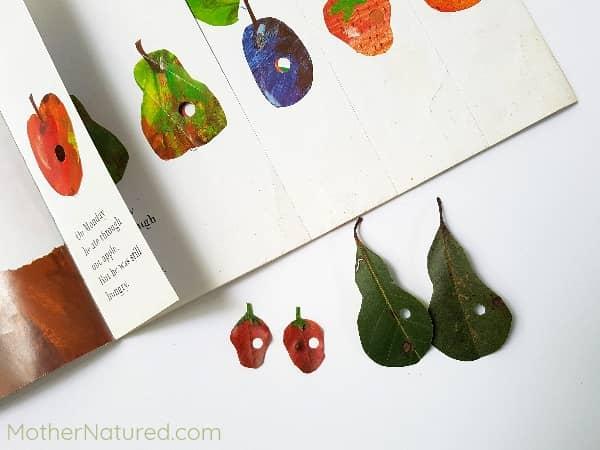 Arte de la fruta La oruga muy hambrienta