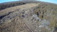 WPD land clearing