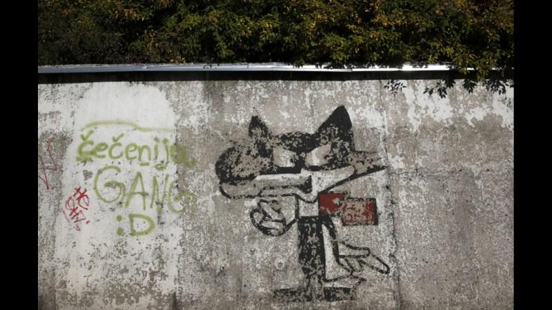 Wolf_Sarajevo