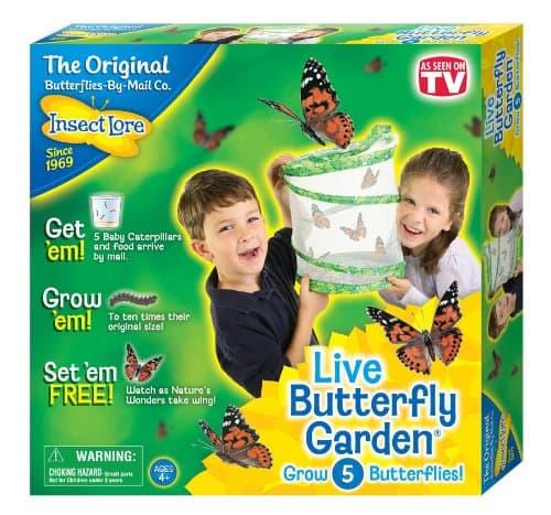 live butterfly garden kit: Easter Basket Ideas