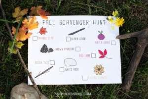 Fall Colors Scavenger Hunt