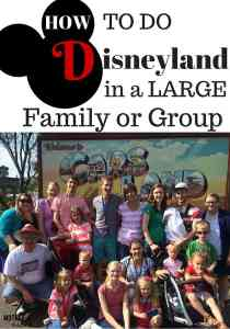 How to Do Disneyland in a Large Family or Group