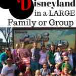 Awesome tips for doing Disneyland in large groups