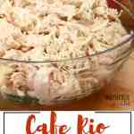 Cafe Rio Chicken + Some other awesome freezer recipes!