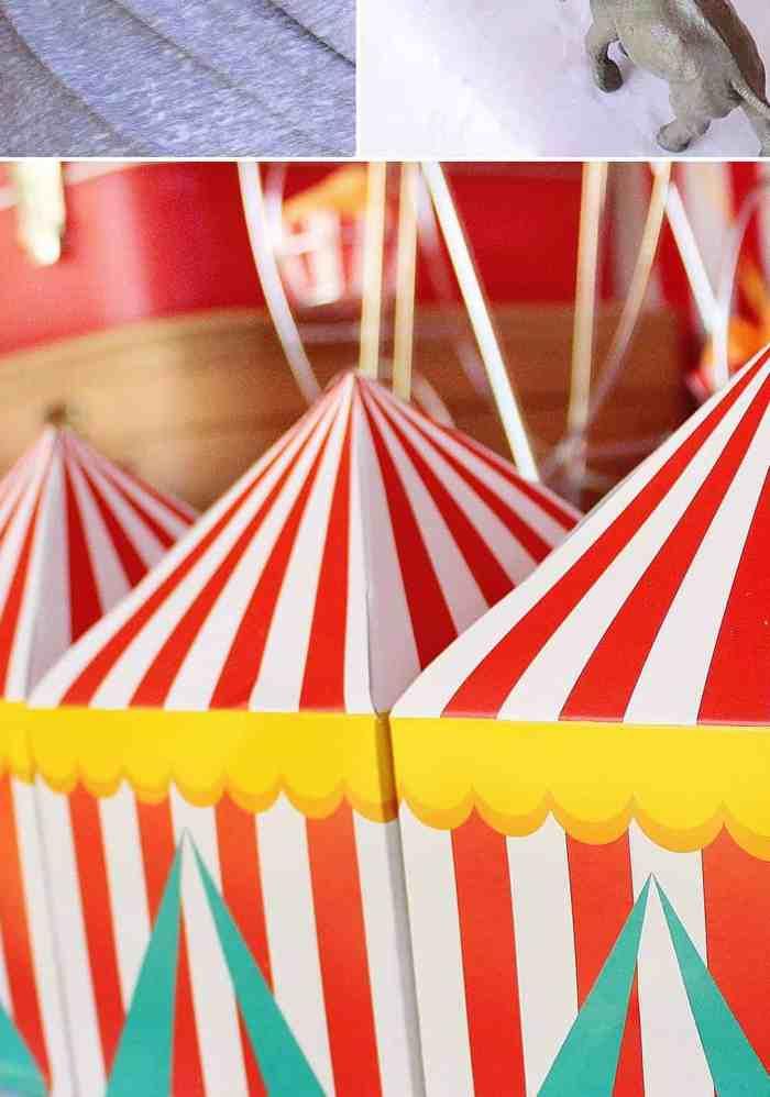 Clown noses circus party