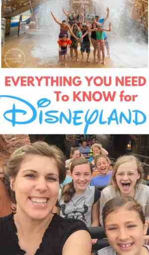 Ultimate Disneyland Travel Guide + Free Printables for the car or plane