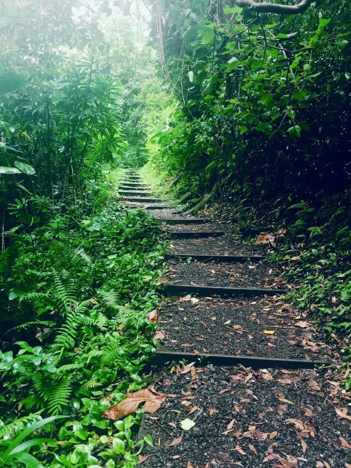 Maui vs Kauai: Road to Hana