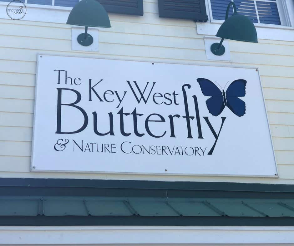 The Key West Butterfly & Nature Conservatory, plus 19+ other fun things to do with kids