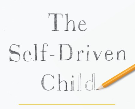 "pencil sketch ""The Self-Driven Child"""