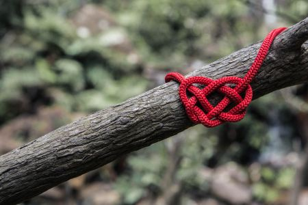 red piece of string tied around a branch into a heart shape
