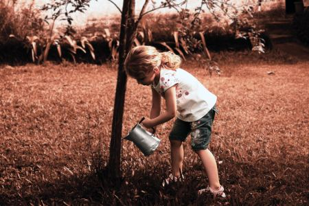 little girl watering small tree with a watering can