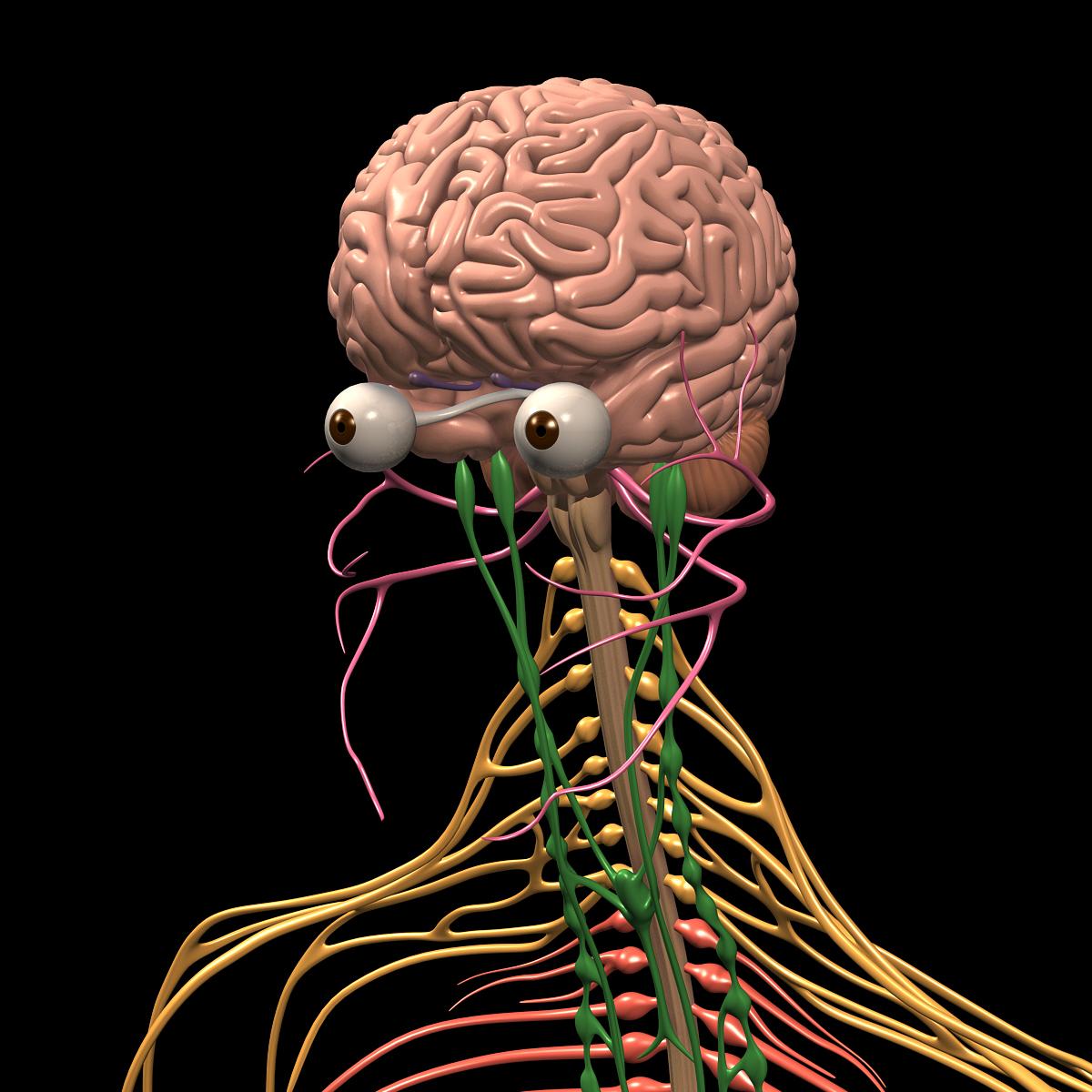 Brain Amp Nervous System Motioncow