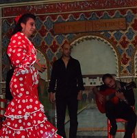 Flamenco show in Madrid, Spain