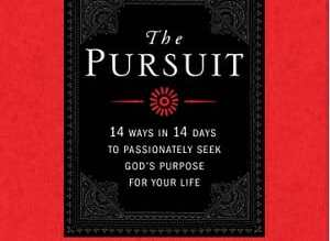 book review - the pursuit by TC Stallings