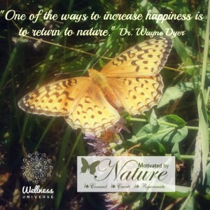 Wayne Dyer quote on nature