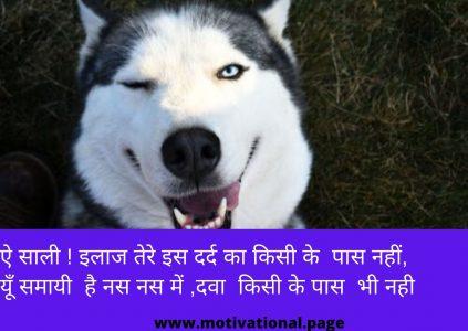 Jija Sali Shayari image, jija sali com, jija sali comedy shayari, jija sali funny quotes, jija sali funny shayari, jija sali funny shayari in hindi, jija sali funny status in hindi, jija sali hindi, jija sali hindi romantic shayari, jija sali hindi shayari, jija sali hindi sms, jija sali hot shayari, jija sali images,