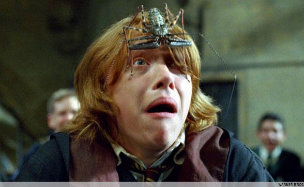 Ron Weasley Afraid of Spider