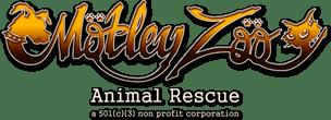 Motley Zoo Merchandise