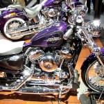 2014 Harley Davidson Sportster Seventy Two Dark Custom Image 7