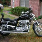 2005 Harley Davidson Xl1200c Sportster Custom Moto Zombdrive Com