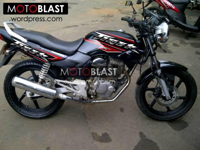 modif-striping-tiger-2000-16