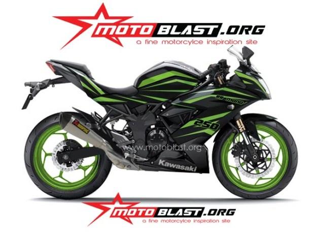 ninja 250 RR mono BLACK TRIBAL1
