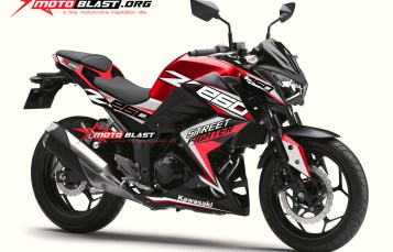 Graphic Kit Kawasaki Z250R RED Sporty