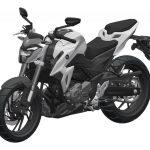 Haojue-HJ300-Suzuki-GSX-S-250-Inikah-Tampang-Varian-Naked-Terbaru-2019-Suzuki-GSX-S250