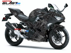1 NINJA 250R 2018 SPIDERMAN BLACK
