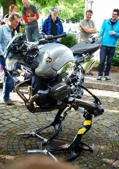 motobird