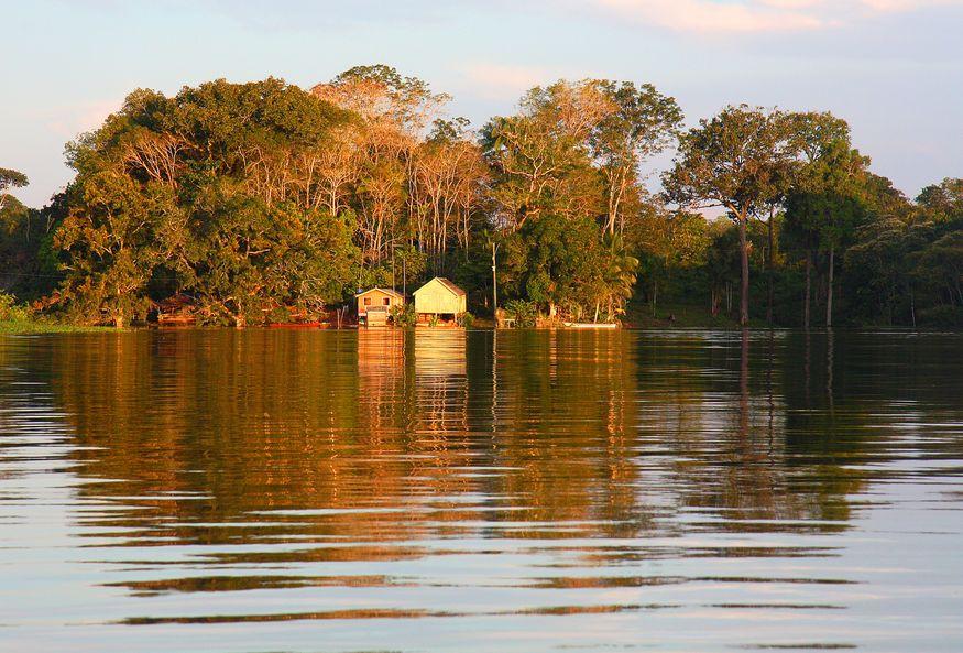 Дома в лесу на берегу Амазонки