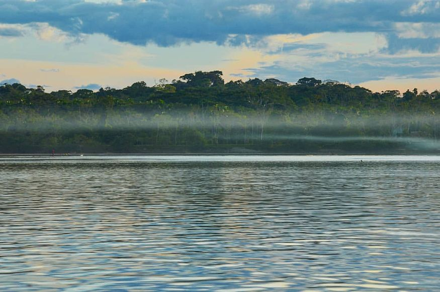 Утренний пейзаж с туманом в Амазонке на реке