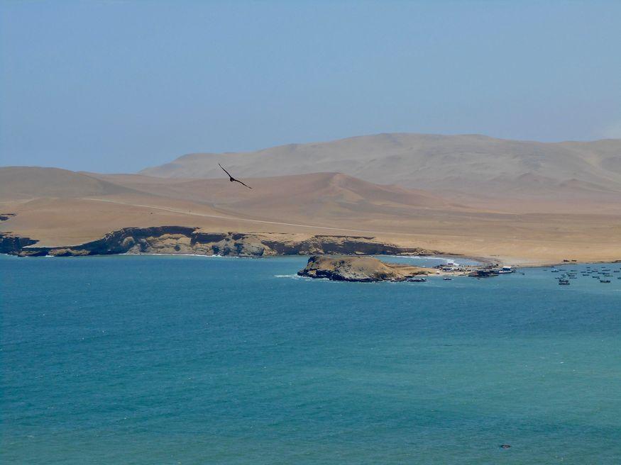 Перуанское побережье Тихого океана и его пляжи в заповеднике Паракас
