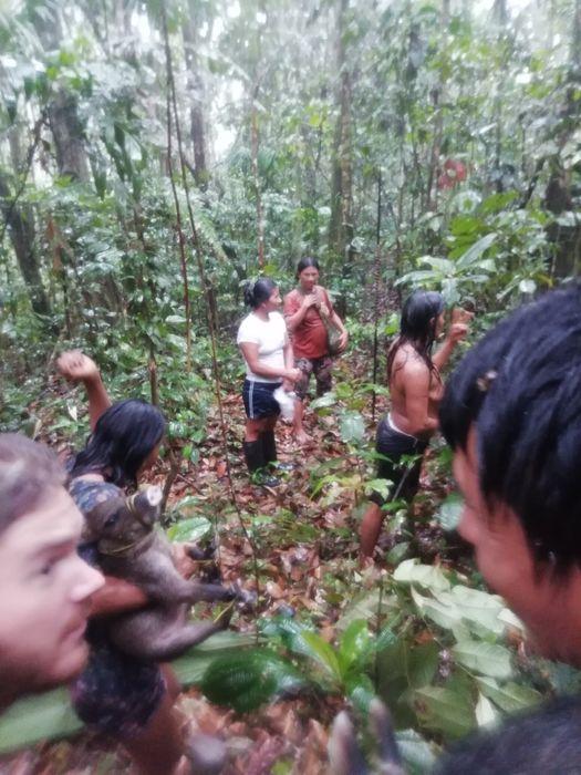 Дождь в амазонских дебрях