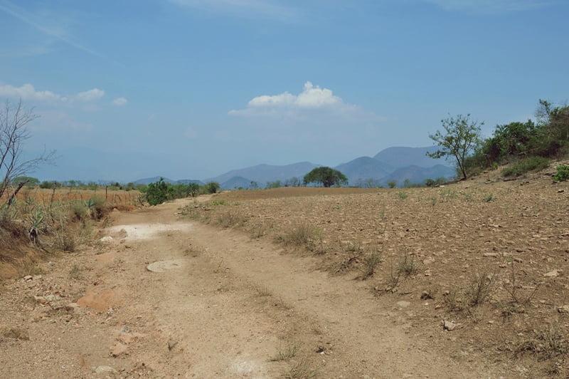 Дорога в Мексике