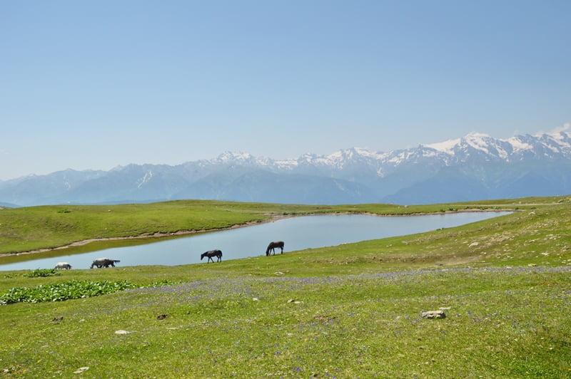 Альпийские озера Грузии