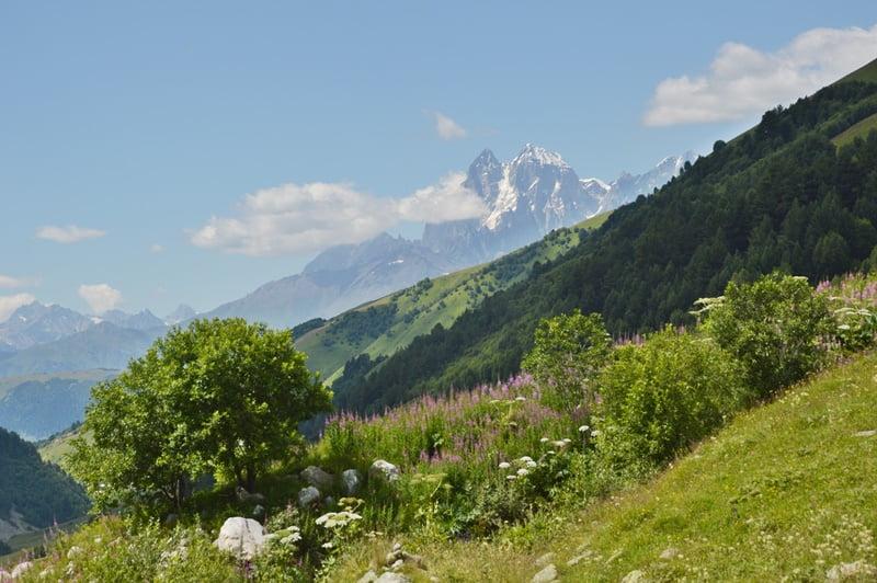 Ушба гора фото