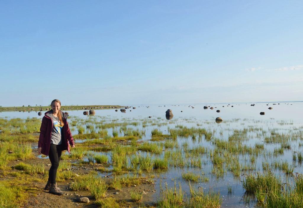 На берегу Белого моря
