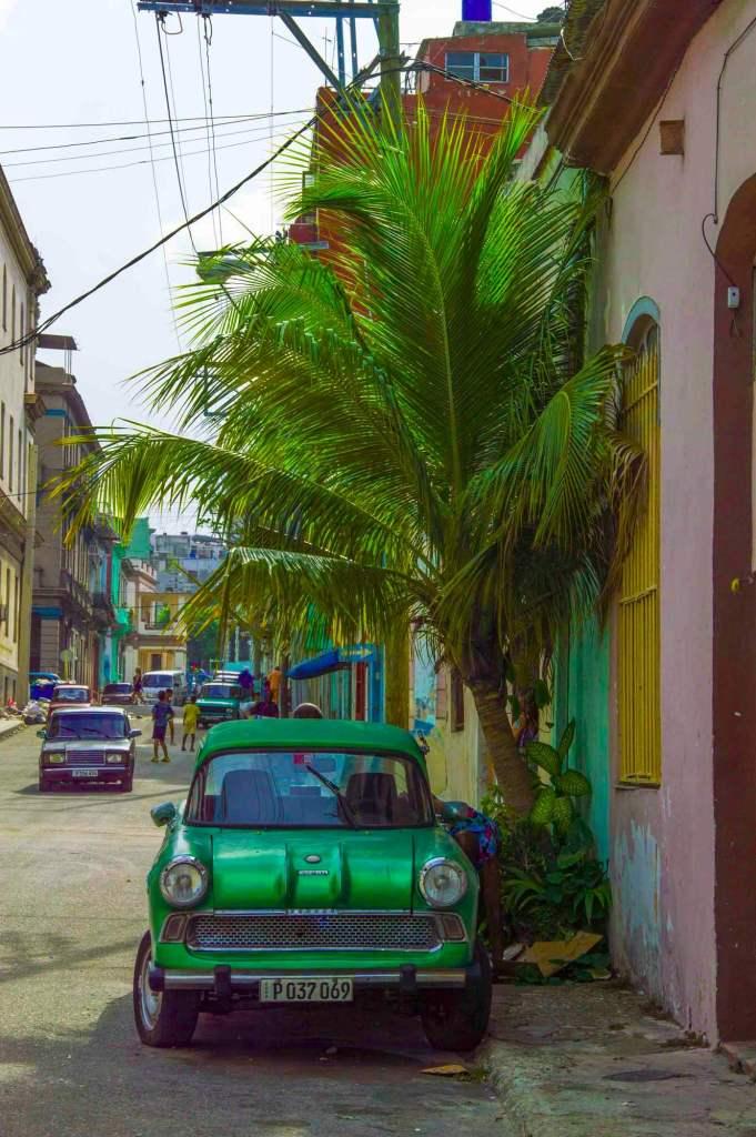 Зеленое ретро авто США под пальмой