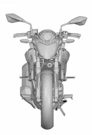 Kawasak-250-Single-Naked-4
